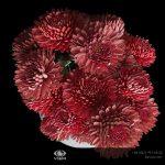 3д визуализация букета хризантем в вазе фирмы Uttermost